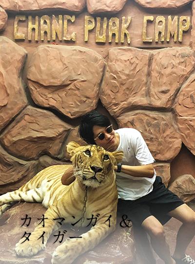 カオマンガイ&タイガー