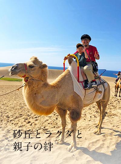 砂丘とラクダと、親子の絆